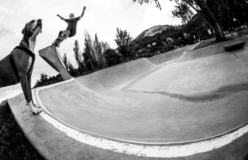 Corbin Harris frontside grinds off the quarterpipe at Bingen skatepark, AUgust 9th 2015